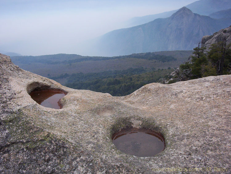 Image of a large stone with man-made holes with El Morillo in the background, Vilches, Chile.