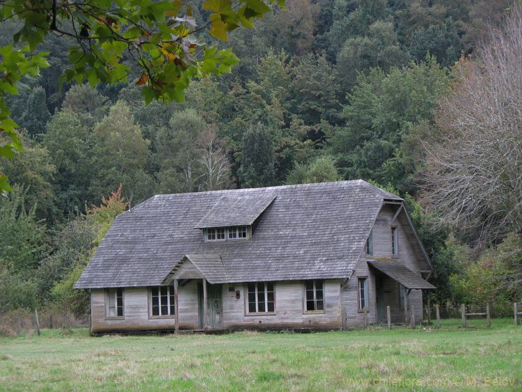 Image of an old wooden house.