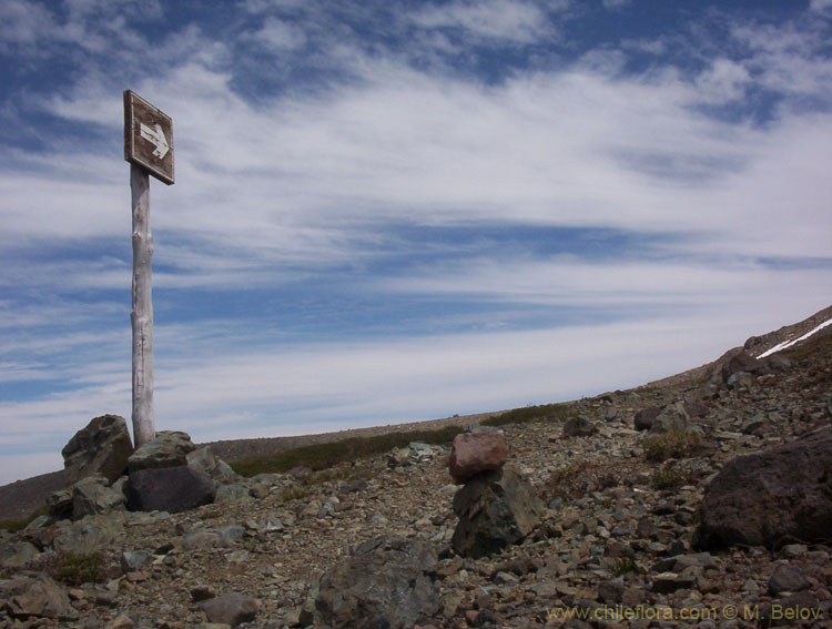 A sign pointing towards Laguna El Alto, Lircay, Vilches, Chile.