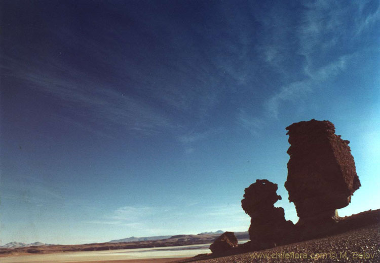 An image of huge rocks on dark blue sky in the Salar de Tara, Chile.