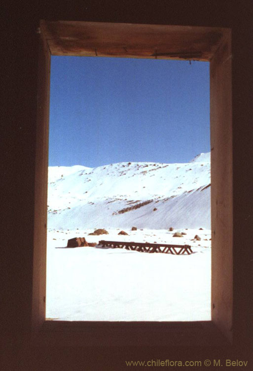 An image of a wooden window frame through which an iron bridge and snow-covered mountains can be seen, in the vicinity of Baños Morales and Baños de la Colina.
