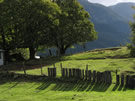 Image of a wooden fence and green lawn near Coñaripe.